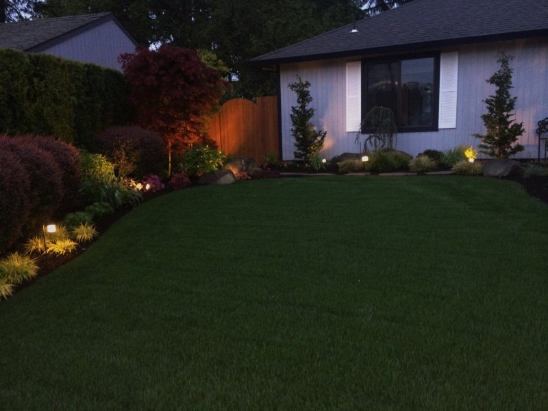 landscape lighting-plants-sod-design