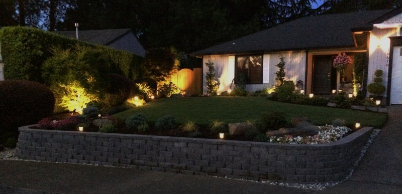 landscape lighting-lighting-lawn-plants