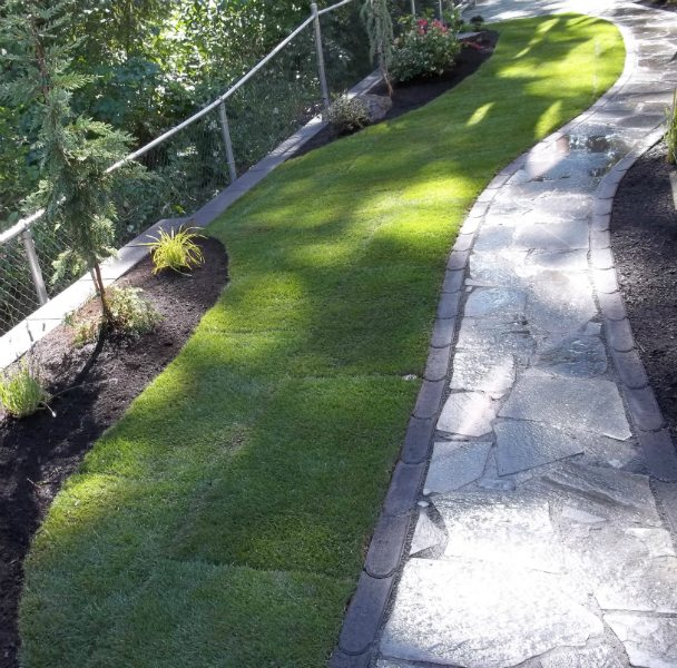 lawn-walkway-flagtsone-edging-plants
