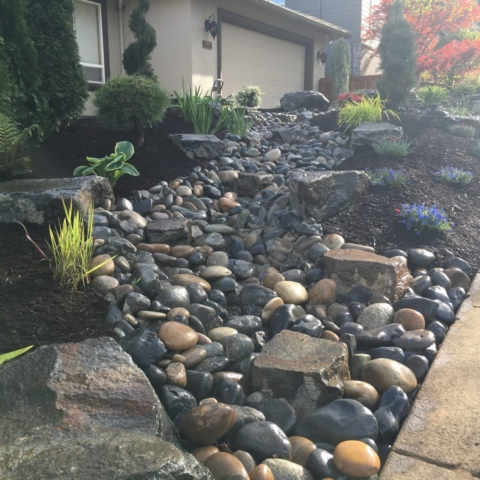 Front Yard Renovation - AFTER
